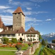 Spiez castle on lake Thun  — Stock Photo