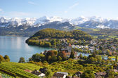 Spiez, Switzerland — Stock Photo