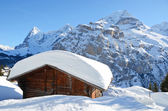 Murren, famous Swiss skiing resort — Stock Photo