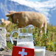 Swiss chocolate and jug of milk on Alpine meadow — Stock Photo #33708009