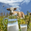 Jug of milk against herd of cows. — Stock Photo #33708063