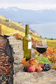 赤ワインとブドウ. — ストック写真