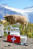 Swiss chocolate and jug of milk on the Alpine meadow — Stockfoto