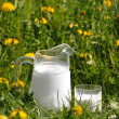 Jug of milk on meadow — Stock Photo #34404455