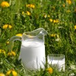 Jug of milk on the meadow — Stock Photo #34404455
