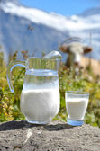 Jug of milk against herd of cows. Jungfrau region, Switzerland — Stock Photo