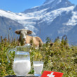 Swiss chocolate and jug of milk on Alpine meadow. Switzerlan — Stock Photo #34906049