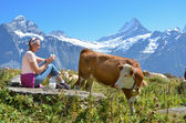 Girl with a jug of milk and cows. Jungfrau region, Switzerland — Stock Photo