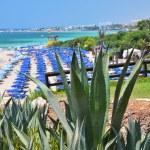 Beach in Ayia Napa, Cyprus — Stock Photo