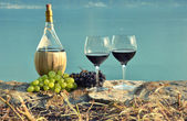 Red wine and grapes. — Stock Photo