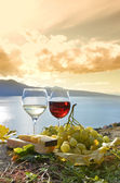 Two wineglasses, cheese and grapes on the terrace of vineyard — Stock Photo
