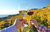 Two hands holding wineglases against vineyards — Stock Photo