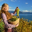 Girl with a basket full of grapes. Lavaux region, Switzerland — Stock Photo #37138773