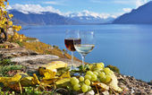 Wine and cheese. Lavaux region, Switzerland — Stock Photo