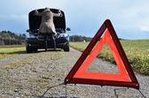 Roken car, girl and warning triangle — Stock Photo