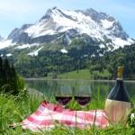 Picnic in Alpine meadow — Stock Photo #43770819