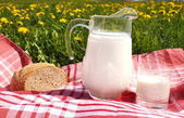 Jug of milk and bread on the spring meadow — Stock fotografie