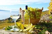 Wino i ser. — Zdjęcie stockowe
