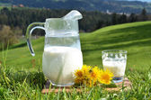 Jug of milk. — Foto Stock