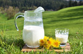 Jug of milk. — Stockfoto