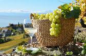 Wijn en kaas — Stockfoto
