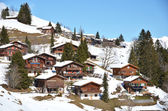 Braunwald, Schweiz — Stockfoto