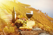 Red wine, cheese and grapes on the terrace of vineyard — Stock Photo