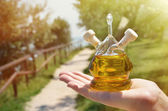 Olive oil. Sirmione, Italy  — Stock Photo