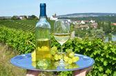 Wine and grapes — Fotografia Stock