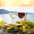 Wine and grapes — Stock Photo #50081645