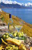 Wina i winogron — Zdjęcie stockowe