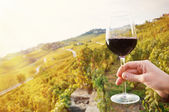 Glass of red wine in  Lavaux region — Stock Photo