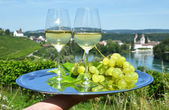 Pair of wineglasses against Rhine river — Stock Photo