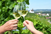 Pair of wineglasses  in Rheinau, — Stock Photo