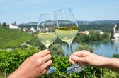 Pair of wineglasses — Foto Stock