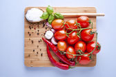 Vegetables fresh tomato with onion, garlic and spices on cutting — Stock Photo