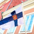 Finnish Flag — Stock Photo #34289785