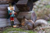 Nutcracker and Squirrel — Stock Photo