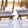 Stock Photo: Park benches in winter
