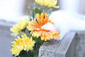 Flowers on a Grave — Stock Photo