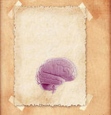Human brain - illustration in frame — Stok fotoğraf
