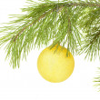 Stock Photo: Yellow Christmas ball on fir branch
