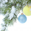 Christmas balls hanging on a branch of pine, covered with snow, — Stock Photo