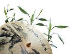 şemsiye ve yeşil bambu — Stok fotoğraf