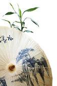 伞和竹 — 图库照片