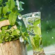 Fresh water with mint — Stock Photo
