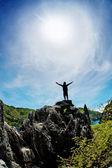 Muž na vrcholu hory. koncepční návrh. — Stock fotografie