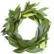 Wreath - Photo