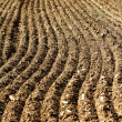 Plowed — Stock Photo