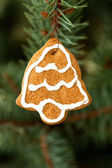 Christmas ornament — Photo